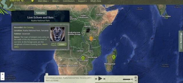 Dźwięki natury ze świata – 3 rozwijające zabawy